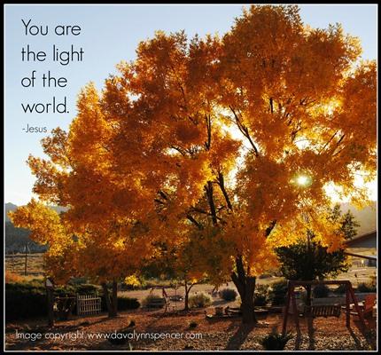 "ALT TEXT ""Tree of light"""