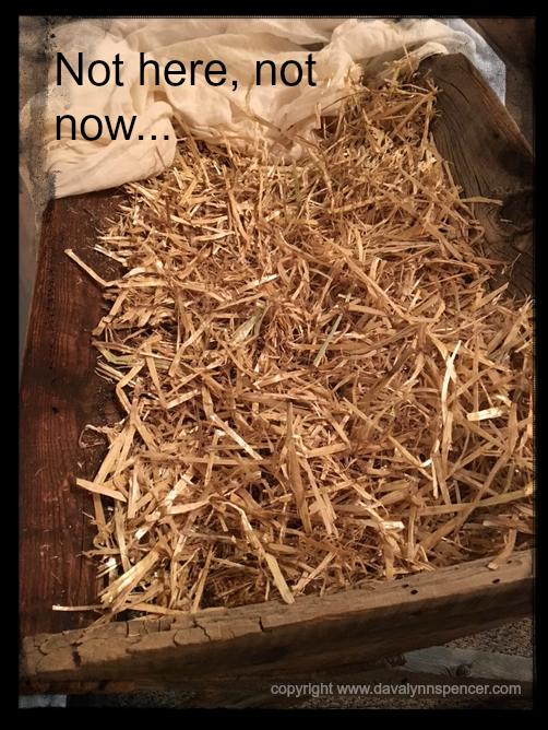 "ALT=""empty manger"""