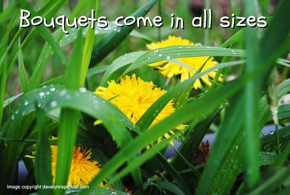 "ALT=""dandelions"""