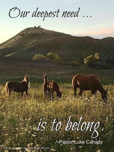 """ALT=""""Horses in a pasture"""""""